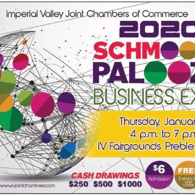 Schmooza Palooza Business Expo 2020